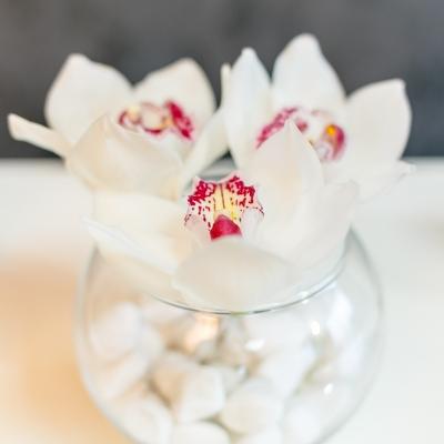 3 Orhidei albe in vaza