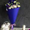 11 Eustome multicolore ambalate