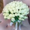 Trandafiri Albi 30-40 cm