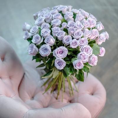 Trandafiri Mov 50-60 cm