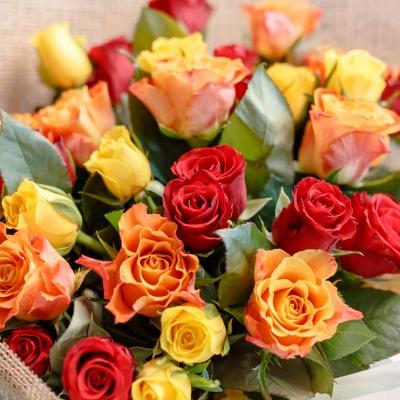 Trandafiri Mix Orange