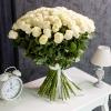 Trandafiri Albi 80-90 cm 101 buc