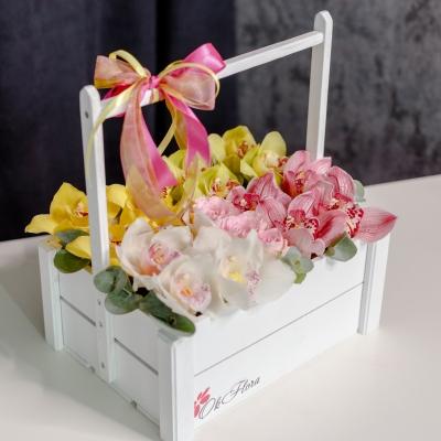 Lădiță cu Orhidei