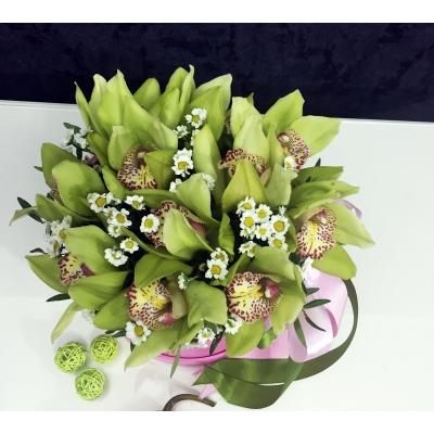 Cutie de lux cu 11 Orhidei Cymbidium