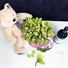 """Cutie de lux cu Orhidei+Vin """"Purcari""""= Urs 48cm"""