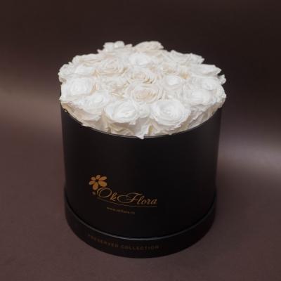 17 Trandafiri Criogenați Albi în Cutie de Lux Mare Neagră