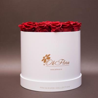 17 Trandafiri Criogenați Roșii în Cutie de Lux Mare Albă