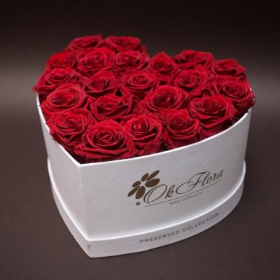 17 Trandafiri Roșii în Inimă Albă