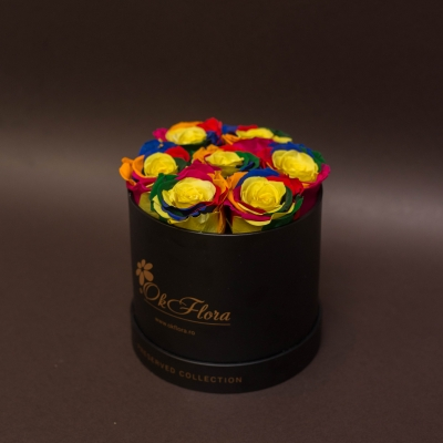 7 Trandafiri Criogenați Rainbow în Cutie de Lux Mică Neagră