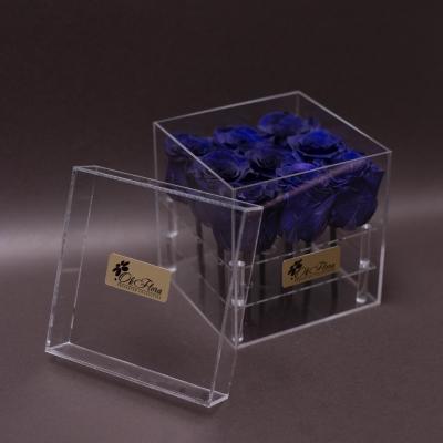 9 Trandafiri Criogenați Albaștri în Cutie Acrilică