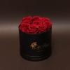 9 Trandafiri Criogenați Roșii în Cutie de Lux Mică Neagră