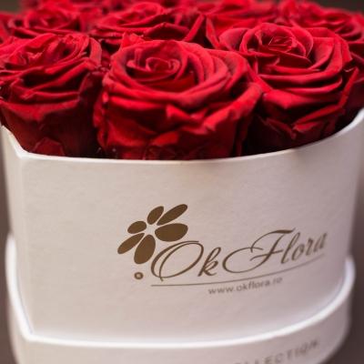 9 Trandafiri Criogenați Roșii în Inimă Albă