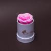 Trandafir Criogenat Roz în Mini-Cutie Albă