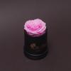 Trandafir Criogenat Roz în Mini-Cutie Neagră