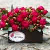 Lădiță cu Trandafiri Îmbujorați + Raffaello Cadou