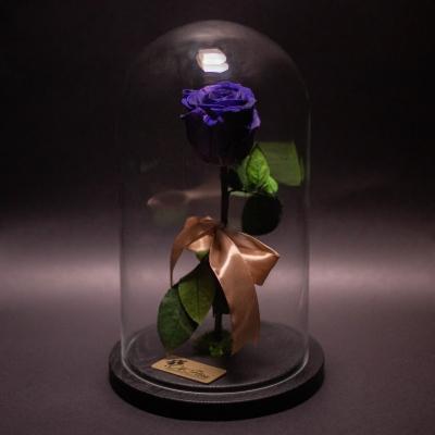 Trandafir Criogenat Albastru în Cupolă Mare