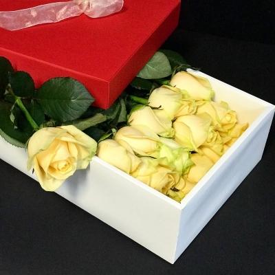 Trandafiri Peach avalanche în Cutie