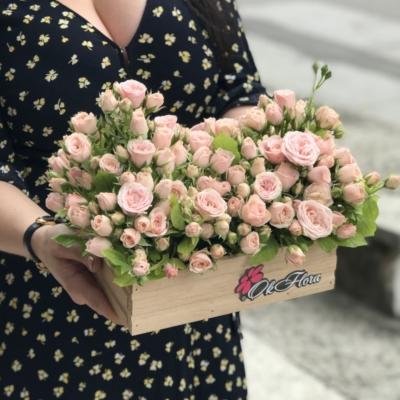 Lădiță cu Trandafiri Tross Roz