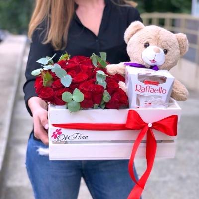 Lădiță cu Trandafiri, Ursuleț și Raffaello