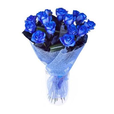 Trandafiri Albaștri