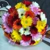 Buchet din 51 gherbere multicolore