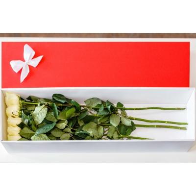 5 Trandafiri albi in cutie